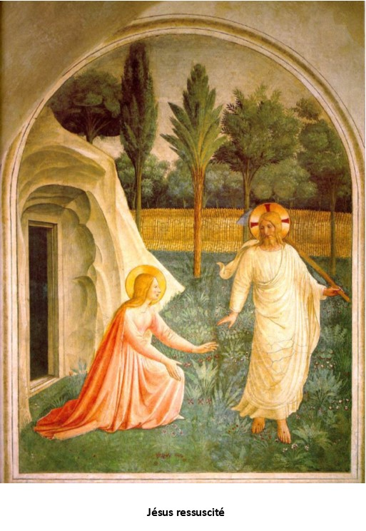 Christ est ressuscité alléluia! Il nous précède sur le chemin…!